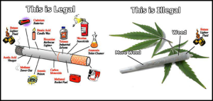 cig-legal-weed-not-legal